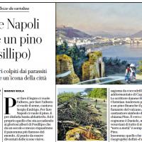 Per fare Napoli ci vuole un pino (a Posillipo) – la Repubblica